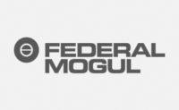 Logo Federal Mogul